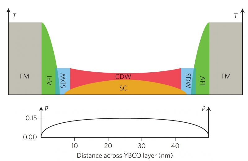 This schematic figure above shows electronic ordering phenomena in a layer of the high-temperature superconductor YBa2Cu3O7 (YBCO) between two ferromagnetic manganese-oxide layers as a function of temperature (T) and distance across the layer. FM = ferromagnetism, SC = superconductivity, AFI = antiferromagnetic insulator, SDW = spin density wave, CDW = charge density wave. The graph below shows the density of mobile charge carriers, p, as a function of distance. (A. Frano et al., Nature Materials 15, 831 (2016)).